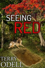 Seeing Red 300x450