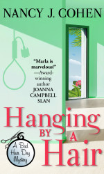 Hanging by a Hair by Nancy Cohen