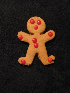 gingerbread_man 001 web
