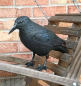 raven on swing edit